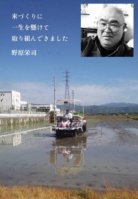 noharasan-syoukai.jpg